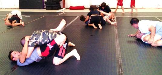 Adults - Hayashi's Martial Arts Academy